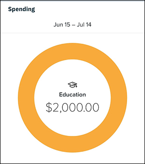 screenshot from the mobile banking app with large yellow circle and a graduation cap inside to reprensent education expenses